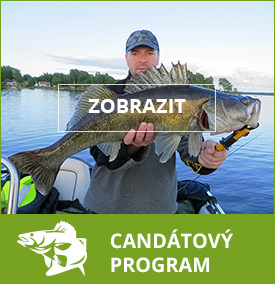 candatovy program